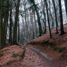 Teutoburger Wald Tecklenburg Nadja Jacke Photography