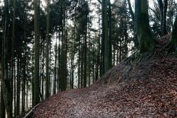 Teutoburger Wald Tecklenburg