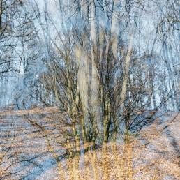 Teutoburger Wald Dörenther Klippen Doppelbelichtung