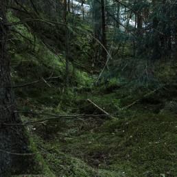 Teutoburger Wald Dörenther Klippen Märchenwald Koboldhausen