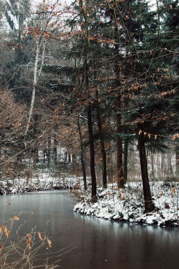 Teutoburger Wald im Winter