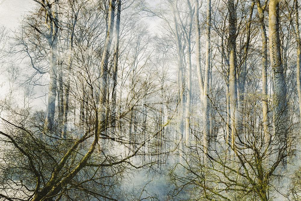 Doppelbelichtung double exposure Teutoburger Wald Nadja Jacke